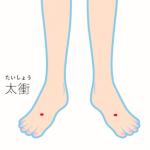 西村のお灸日記(2) ~台座灸における三陰交・太衝の検証~の詳細へ