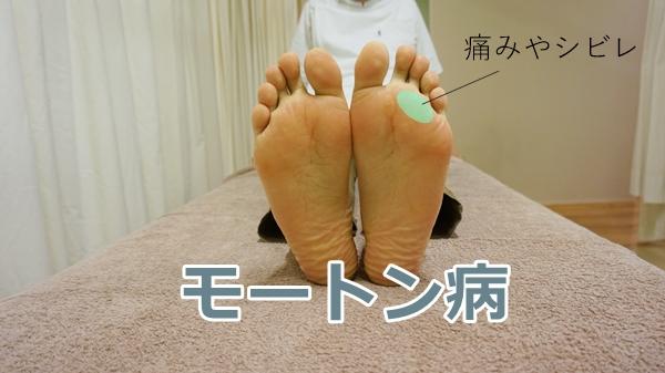 DSC05465moton